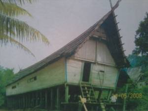Desa Minangkabau di Pedalaman Kalimantan